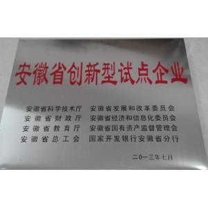 安徽省创新型试点企业