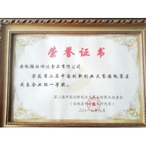 第二届中国创新创业大赛安徽赛区成长企业组一等奖