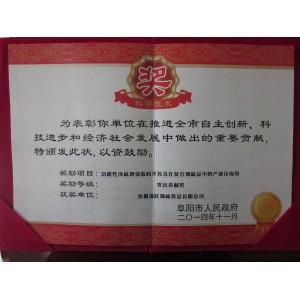 突出贡献奖(功能性风味增强肽的开发及在复合调味品中的产业化应用)