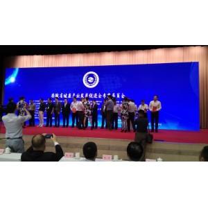 安徽健康产业发展促进会正式成立    安徽环球体育官网下载集团当选为首届副会长单位